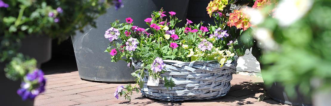 impressie Flora Inn bloemisten bathmen